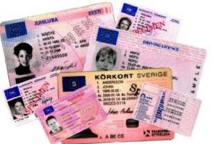 Canjear el carnet de conducir en Zaragoza